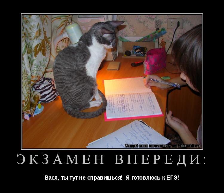 Котоматрица: Экзамен впереди: Вася, ты тут не справишься!  Я готовлюсь к ЕГЭ!