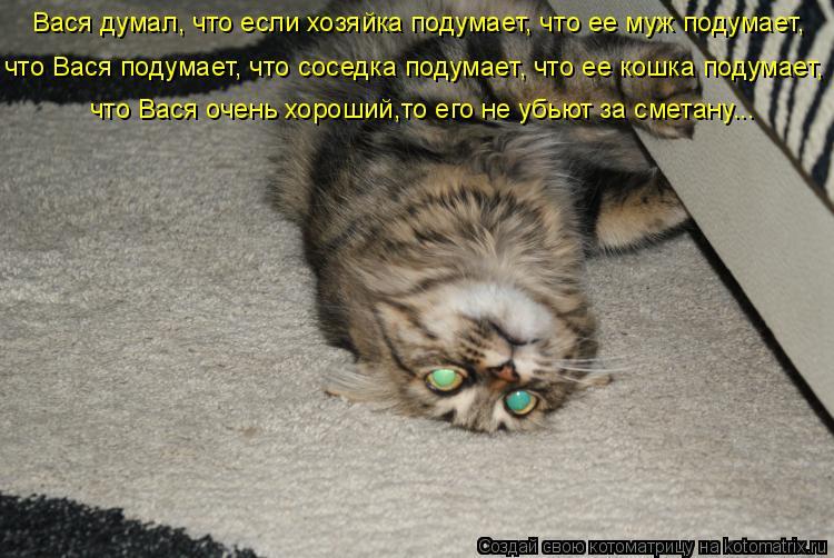 Котоматрица: Вася думал, что если хозяйка подумает, что ее муж подумает, что Вася подумает, что соседка подумает, что ее кошка подумает,  что Вася очень хо