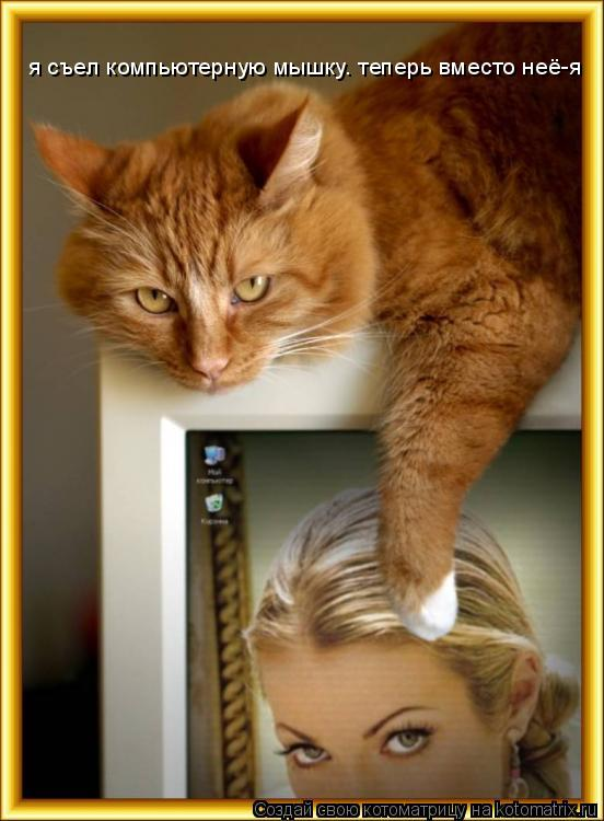 Котоматрица: я съел компьютерную мышку. теперь вместо неё-я