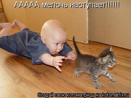 Котоматрица: ААААА мелочь наступает!!!!!!