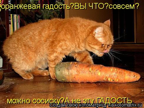 Котоматрица: оранжевая гадость?ВЫ ЧТО? совсем? можно сосиску?А не эту ГАДОСТЬ оранжевая гадость?ВЫ ЧТО?совсем? оранжевая гадость?ВЫ ЧТО?совсем?