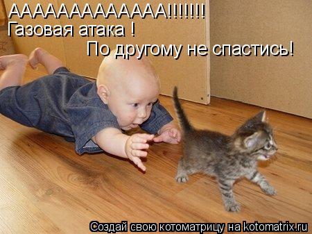 Котоматрица: ААААААААААААА!!!!!!! Газовая атака ! По другому не спастись!