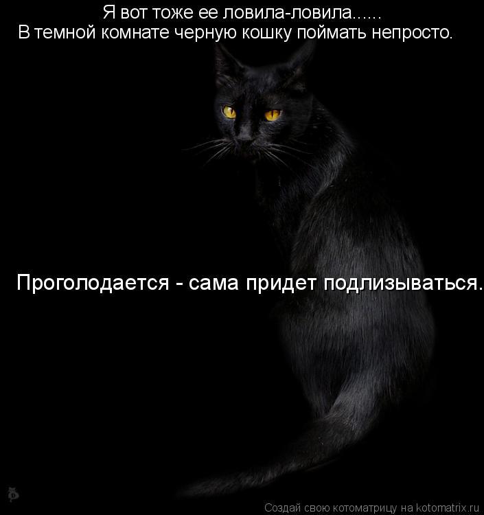 Котоматрица: Я вот тоже ее ловила-ловила...... В темной комнате черную кошку поймать непросто. Проголодается - сама придет подлизываться.