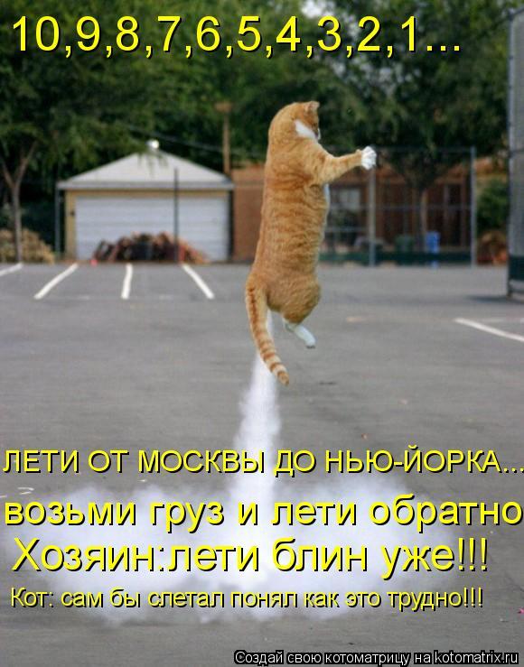 Котоматрица: 10,9,8,7,6,5,4,3,2,1... возьми груз и лети обратно Кот: сам бы слетал понял как это трудно!!! ЛЕТИ ОТ МОСКВЫ ДО НЬЮ-ЙОРКА... Хозяин:лети блин уже!!!