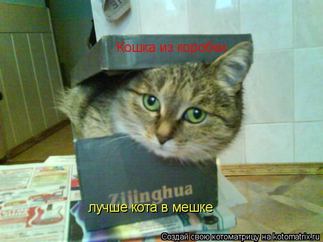 Котоматрица: Кошка из коробки лучше кота в мешке