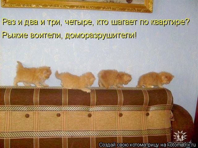 Котоматрица: Раз и два и три, четыре, кто шагает по квартире? Рыжие воители, доморазрушители!