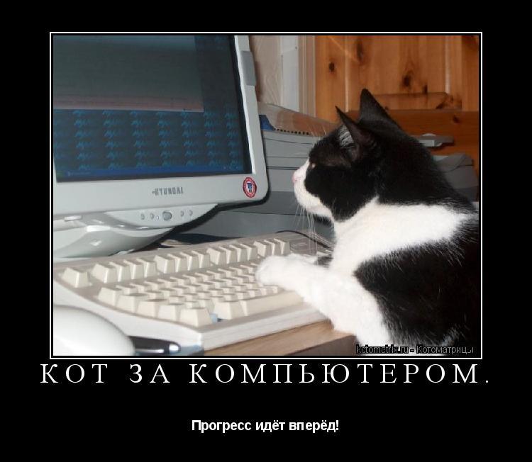 Котоматрица: Кот за компьютером. Прогресс идёт вперёд!