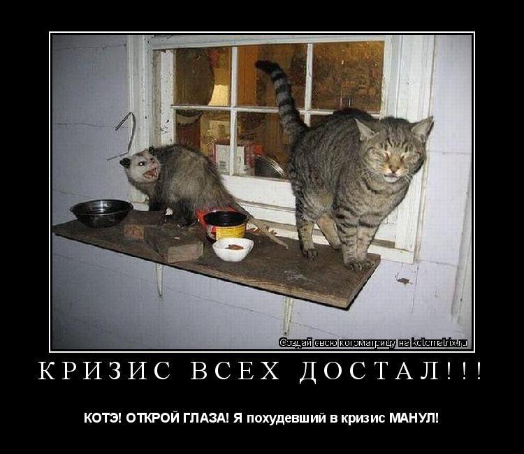 Котоматрица: КРИЗИС ВСЕХ ДОСТАЛ!!! КОТЭ! ОТКРОЙ ГЛАЗА! Я похудевший в кризис МАНУЛ!