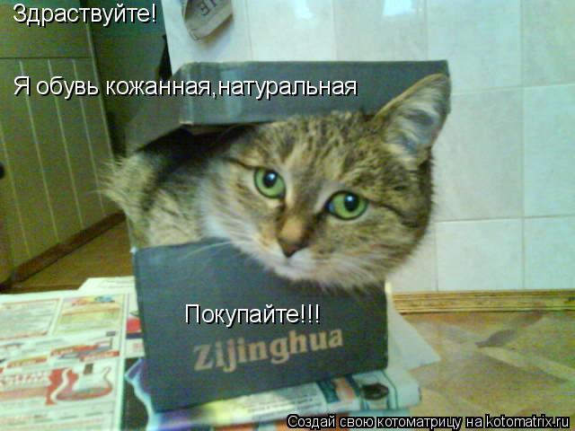 Котоматрица: Здраствуйте! Я обувь кожанная,натуральная Покупайте!!!