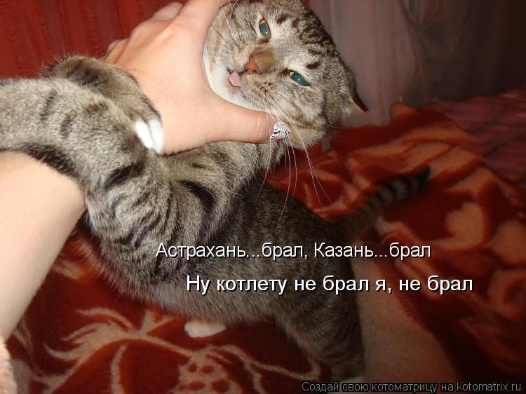 Котоматрица: Астрахань...брал, Казань...брал Ну котлету не брал я, не брал