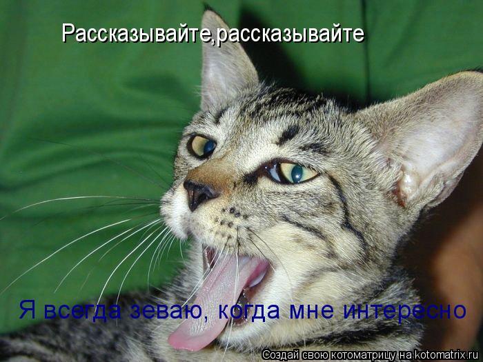Котоматрица: Рассказывайте,рассказывайте Я всегда зеваю, когда мне интересно