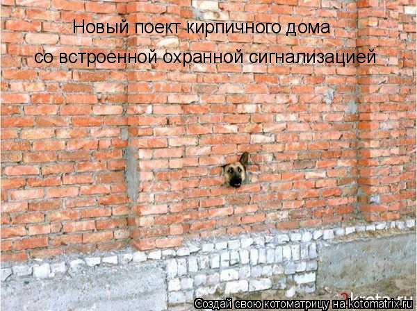 Котоматрица: Новый поект кирпичного дома Новый поект кирпичного дома со встроенной охранной сигнализацией