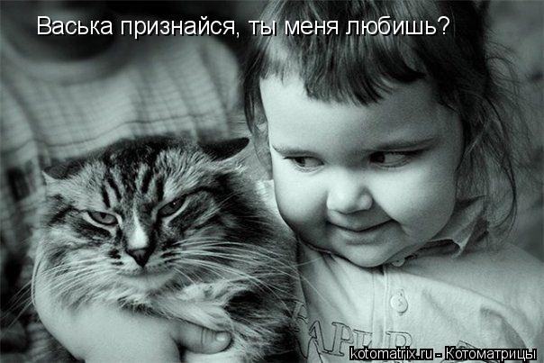 Котоматрица: Васька признайся, ты меня любишь?