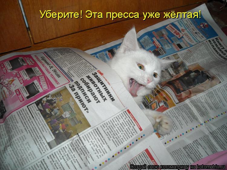 Котоматрица: Уберите! Эта пресса уже жёлтая!