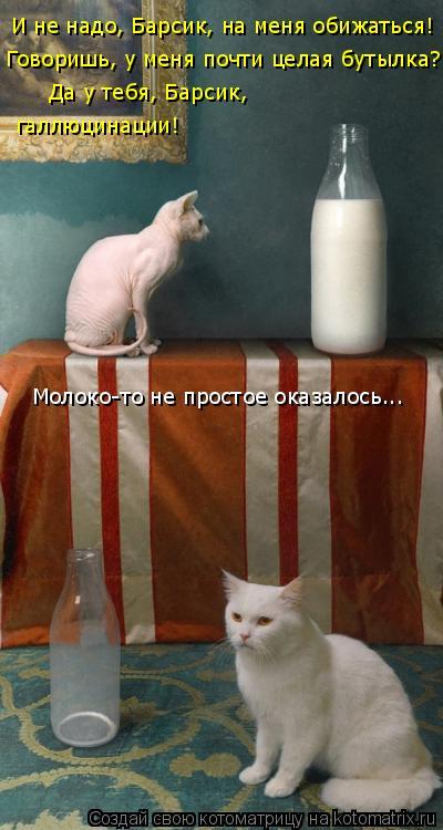 Котоматрица: И не надо, Барсик, на меня обижаться! Говоришь, у меня почти целая бутылка? Да у тебя, Барсик,  галлюцинации! Молоко-то не простое оказалось...