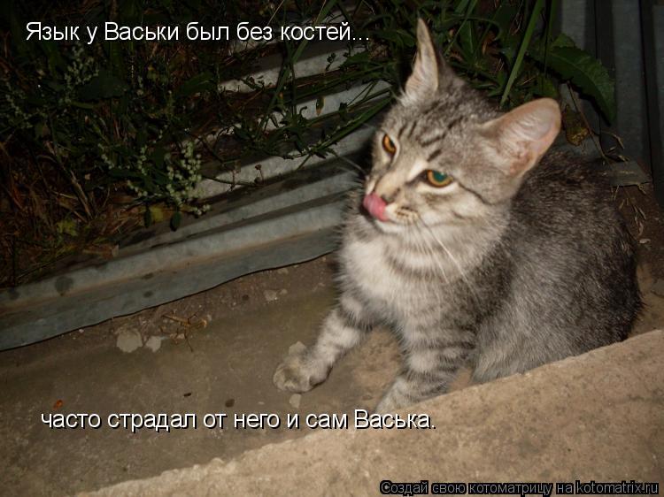 Котоматрица: Язык у Васьки был без костей... часто страдал от него и сам Васька.