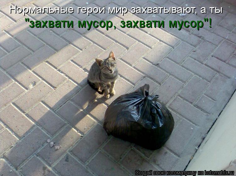 """Котоматрица: Нормальные герои мир захватывают, а ты  """"захвати мусор, захвати мусор""""!"""