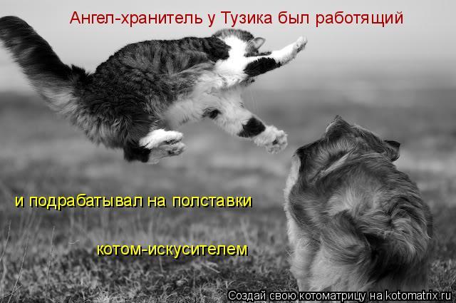 Котоматрица: и подрабатывал на полставки котом-искусителем Ангел-хранитель у Тузика был работящий