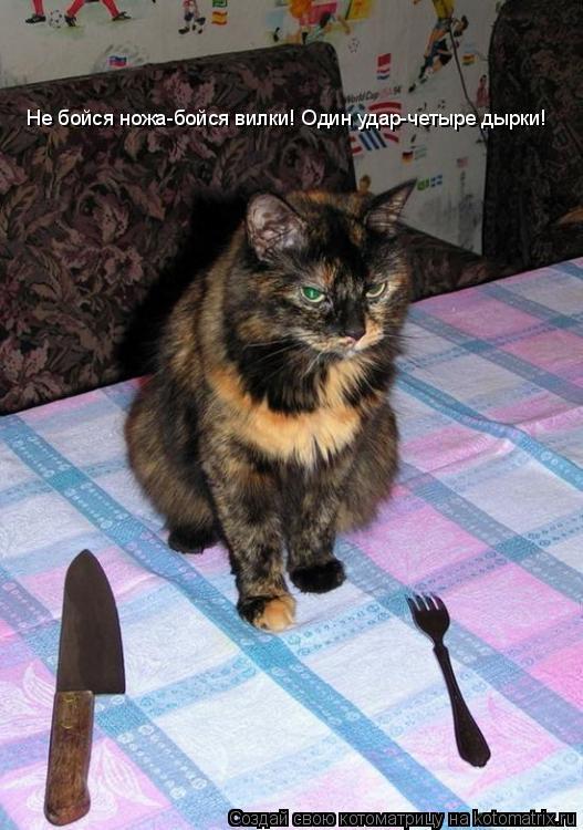 Котоматрица: Не бойся ножа-бойся вилки! Один удар-четыре дырки!