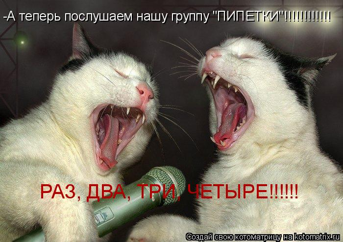 "Котоматрица: -А теперь послушаем нашу группу ""ПИПЕТКИ""!!!!!!!!!!!! РАЗ, ДВА, ТРИ, ЧЕТЫРЕ!!!!!!"
