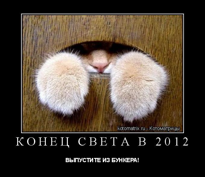 Котоматрица: Конец света в 2012 ВЫПУСТИТЕ ИЗ БУНКЕРА!