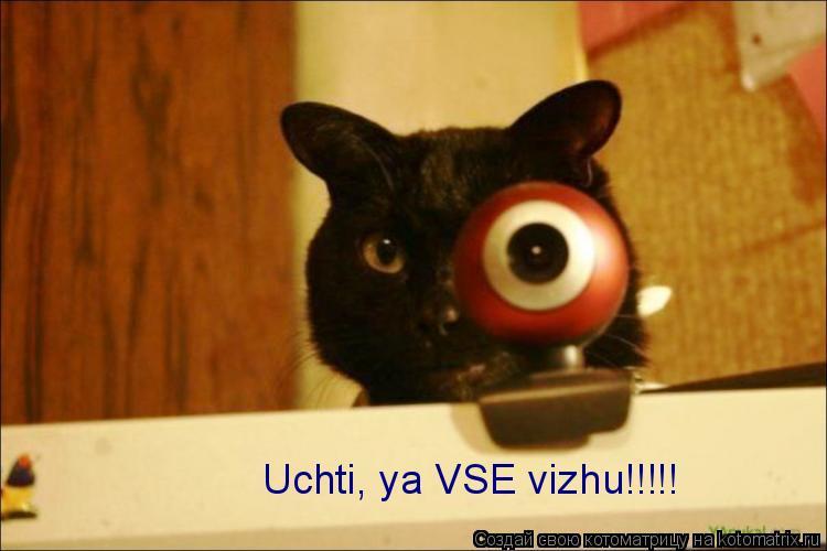 Котоматрица: Uchti, ya VSE vizhu!!!!!