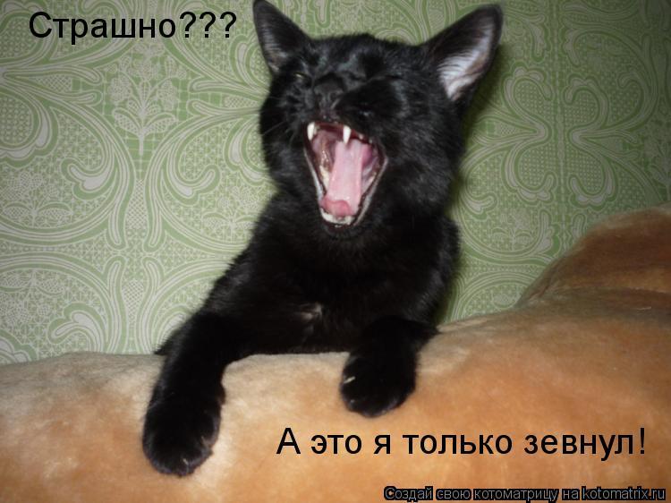 Котоматрица: Страшно??? А это я только зевнул!