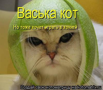 Котоматрица: Васька кот Но тоже хочет играть в хоккей