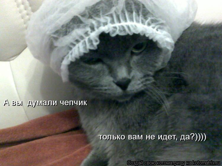 Котоматрица: А вы что думали?  А вы  думали чепчик  только вам не идет, да?))))