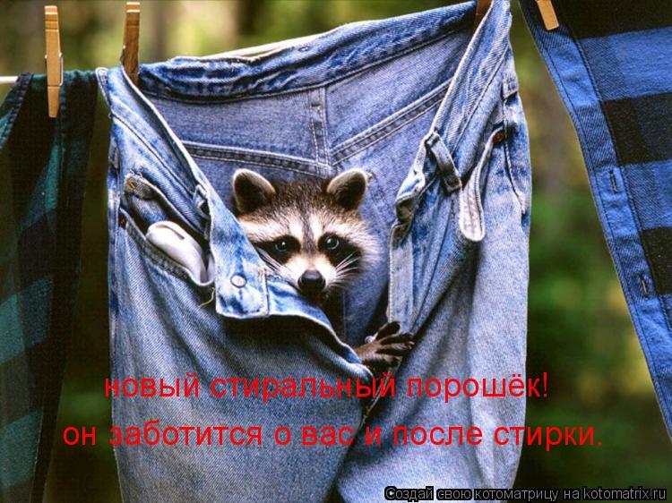 Котоматрица: новый стиральный порошёк! он заботится о вас и после стирки.