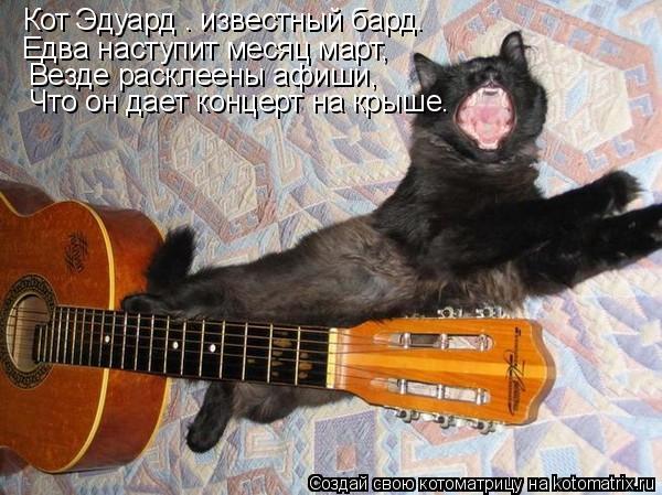 Котоматрица: Кот Эдуард – известный бард. Едва наступит месяц март,    Везде расклеены афиши,   Что он дает концерт на крыше.