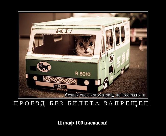 Котоматрица: Проезд без билета запрещён! Штраф 100 вискасов!