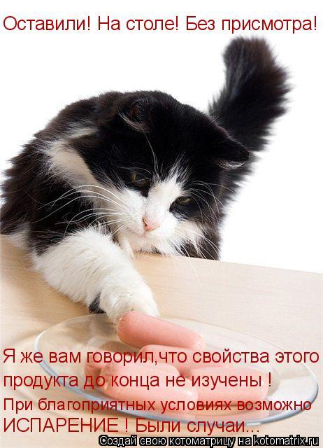 Котоматрица: Оставили! На столе! Без присмотра! Я же вам говорил,что свойства этого продукта до конца не изучены ! При благоприятных условиях возможно  ИС