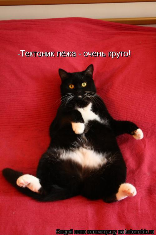 Котоматрица: -Тектоник лёжа - очень круто!