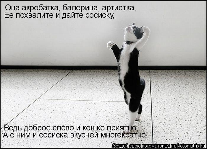 Котоматрица: Она акробатка, балерина, артистка, Ее похвалите и дайте сосиску, Ведь доброе слово и кошке приятно, А с ним и сосиска вкусней многократно