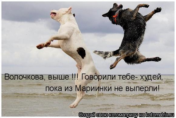 Котоматрица: Волочкова, выше !!! Говорили тебе- худей, пока из Мариинки не выперли!