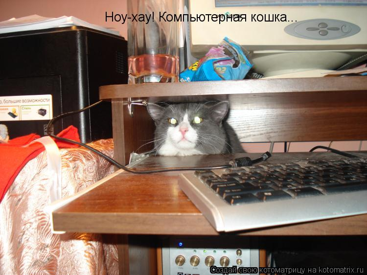 Котоматрица: Ноу-хау! Компьютерная кошка...