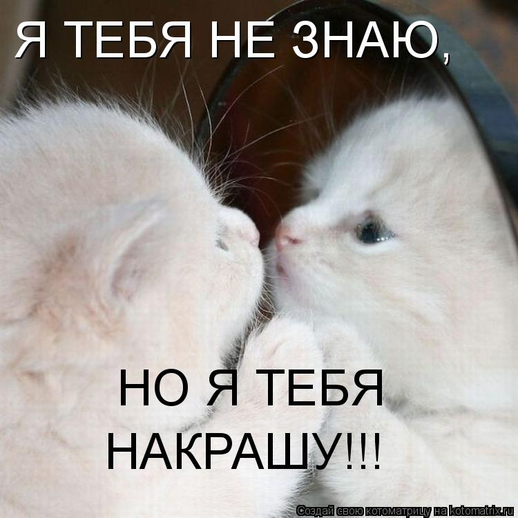 Котоматрица: Я ТЕБЯ НЕ ЗНАЮ, НО Я ТЕБЯ  НАКРАШУ!!!