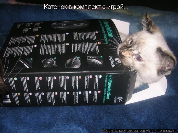 Котоматрица: Катёнок в комплект с игрой...