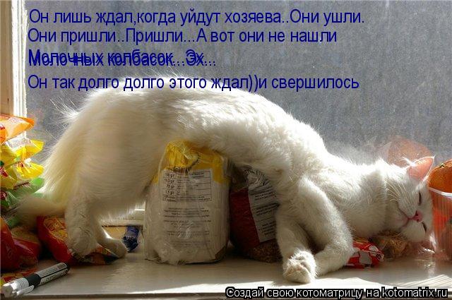 Котоматрица: Он лишь ждал,когда уйдут хозяева..Они ушли. Они пришли..Пришли...А вот они не нашли Молочных колбасок...Эх... Молочных колбасок...Эх... Он так долг