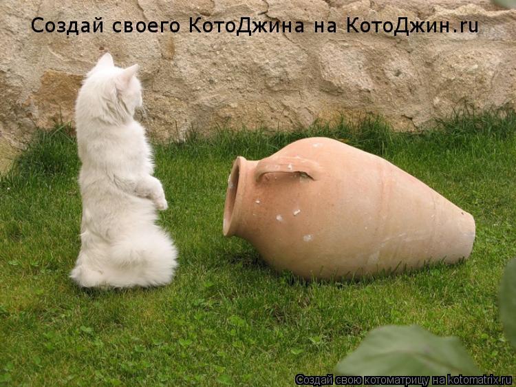 Котоматрица: Создай своего КотоДжина на КотоДжин.ru