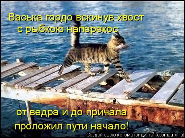 Котоматрица: Васька гордо вскинув хвост с рыбкою наперекос от ведра и до причала проложил пути начало!