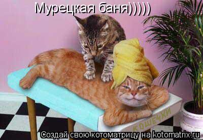 Котоматрица: Мурецкая баня)))))