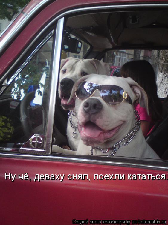 minet-vo-vremya-masturbatsii-video
