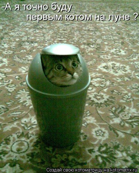 Котоматрица: -А я точно буду  первым котом на луне ?