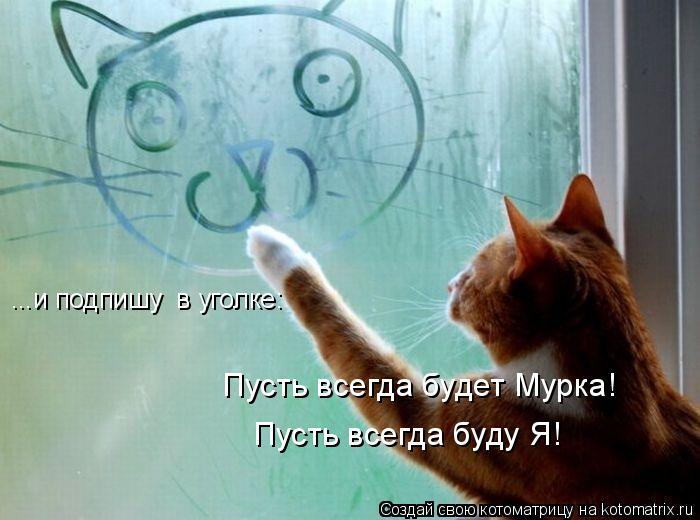 Котоматрица: ...и подпишу  в уголке: Пусть всегда будет Мурка! Пусть всегда буду Я!