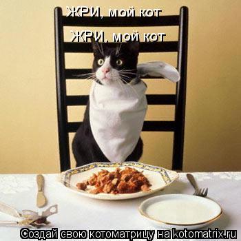 Котоматрица: ЖРИ, мой кот ЖРИ, мой кот