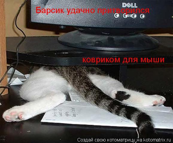 Котоматрица: Барсик удачно притворился ковриком для мыши