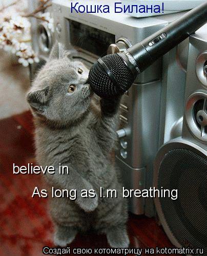 Котоматрица: Кошка Билана! believe in  As long as I'm breathing