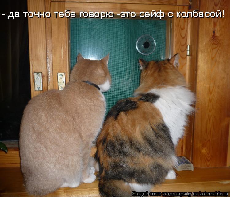 Котоматрица: - да точно тебе говорю -это сейф с колбасой!